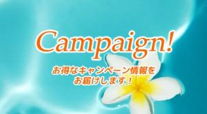 Campaign!